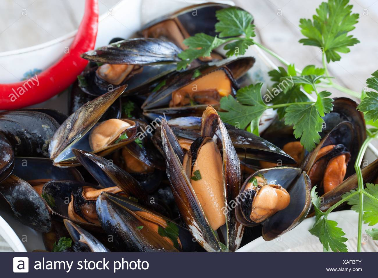 Closeup of bowl with mussels saute decorated with fresh parsley and red chili pepper. Stock Photo