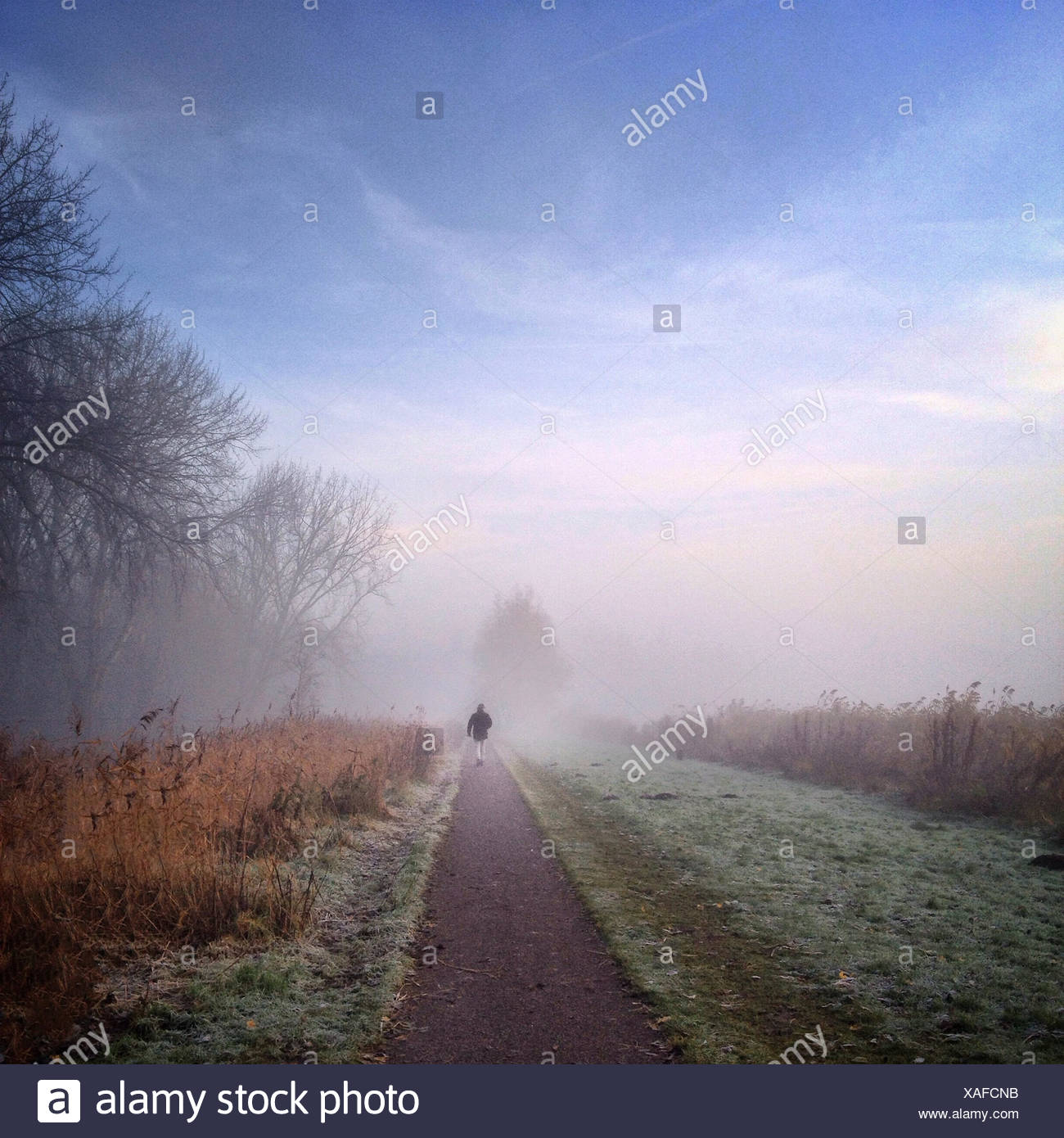 Man walking down path on misty morning - Stock Image
