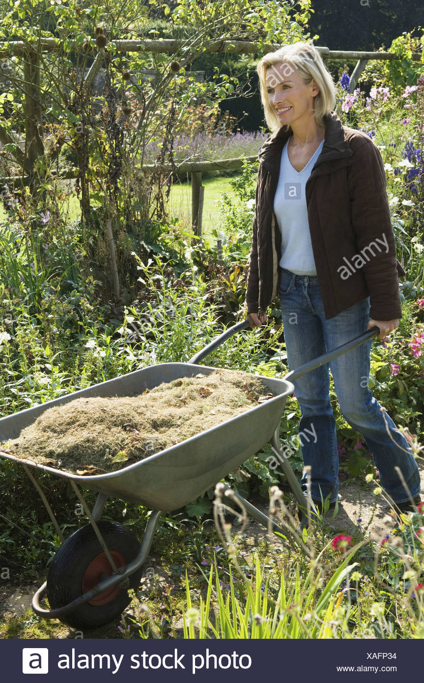 A woman pushing a wheelbarrow of grass clippings  England - Stock Image