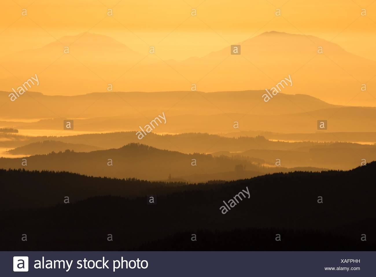 Mt St Helens and Mt Adams from summit viewpoint, Saddle Mountain State Park, Oregon. - Stock Image
