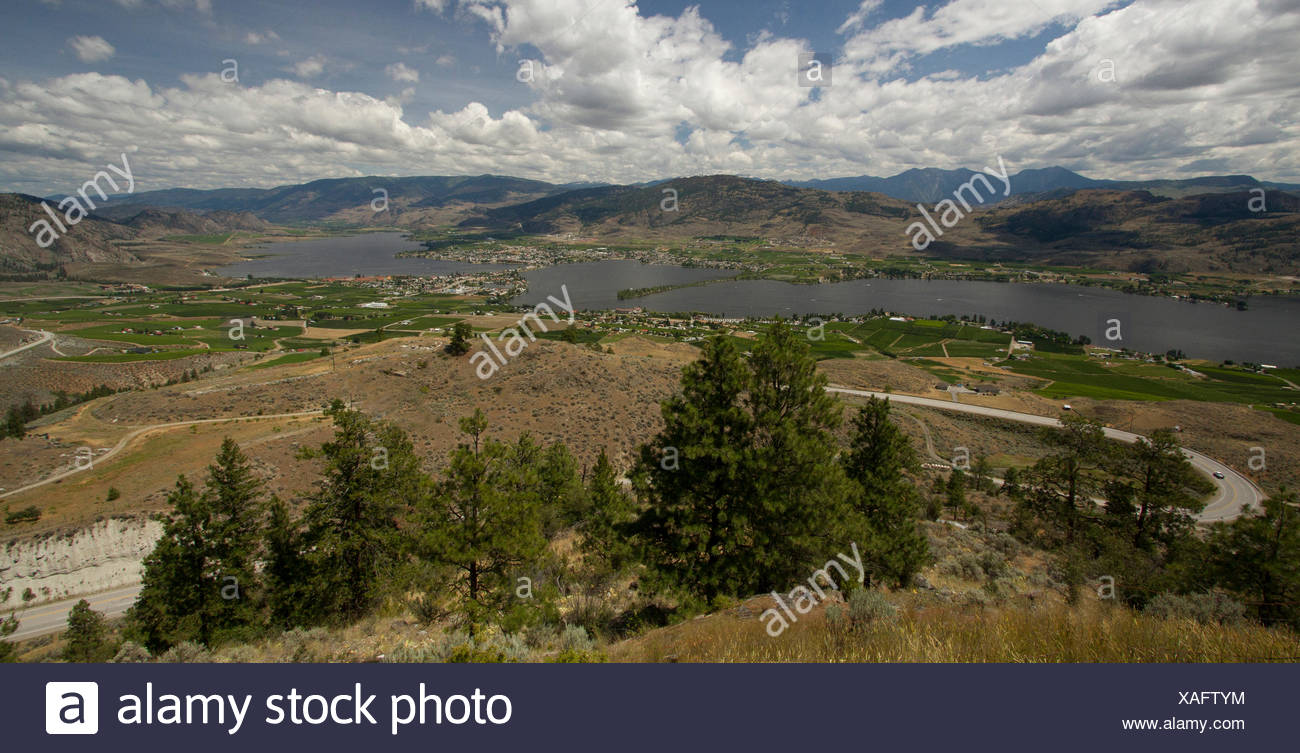 Anarchist Mtn, Okanagan viewpoint, Osoyoos, Vineyards, habitat loss, habitat destruction, Okanagan, BC, Canada - Stock Image