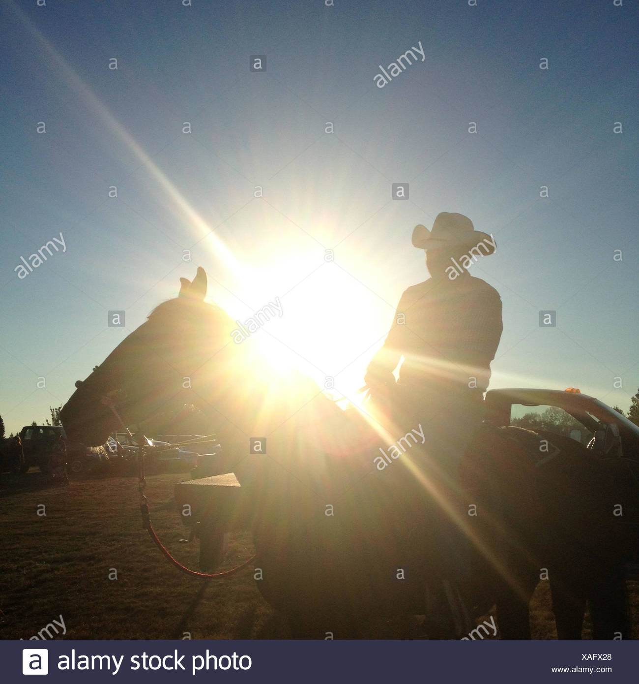 USA, Washington DC, Silhouette of a cowboy on horse - Stock Image