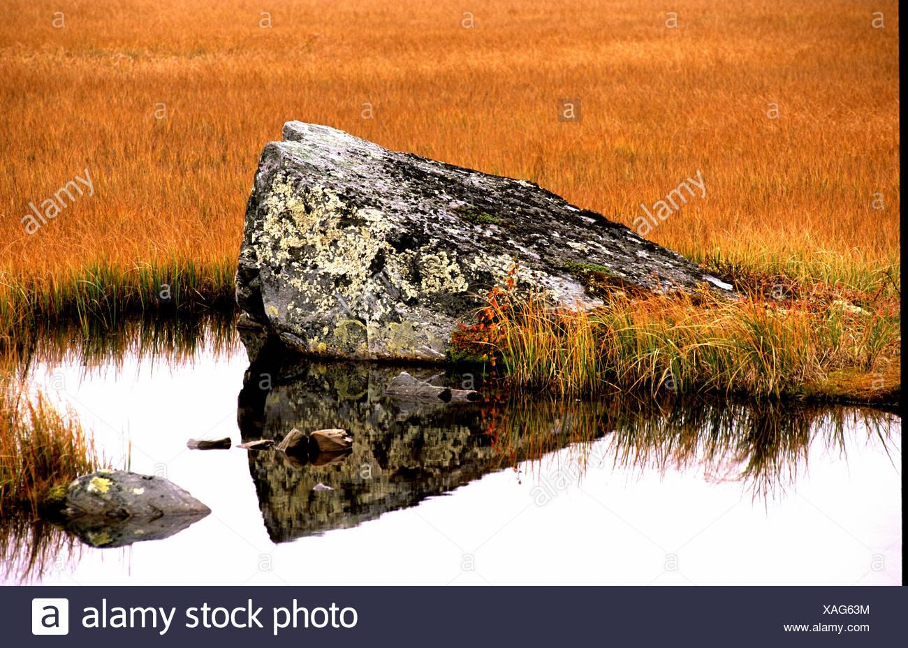 boulder municipality Oystre Slidre grass Jotunheimvegen scenery moor Norway Europe Oppland lake sea Segg - Stock Image