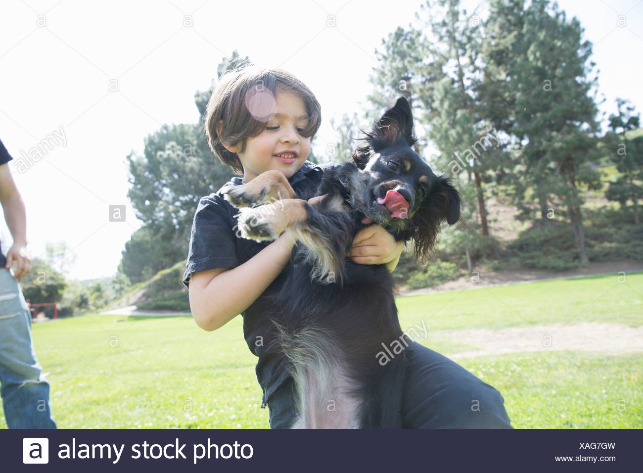 Young boy in park playing with his dog Stock Photo