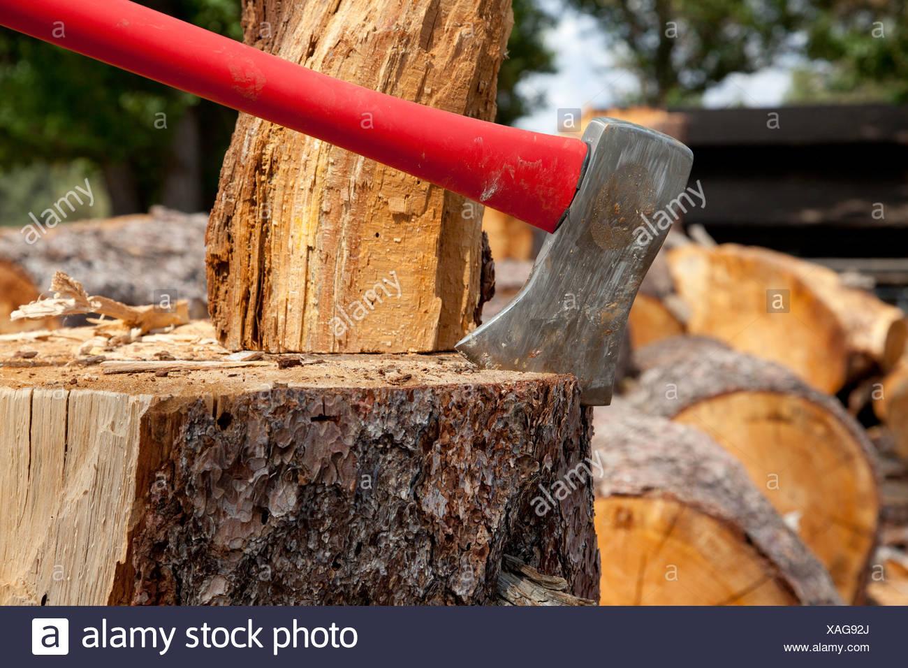 Axe wedged into tree stump - Stock Image