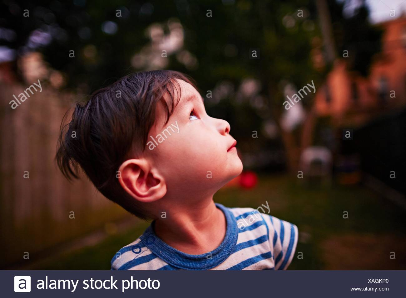 Boy looking up into sky - Stock Image