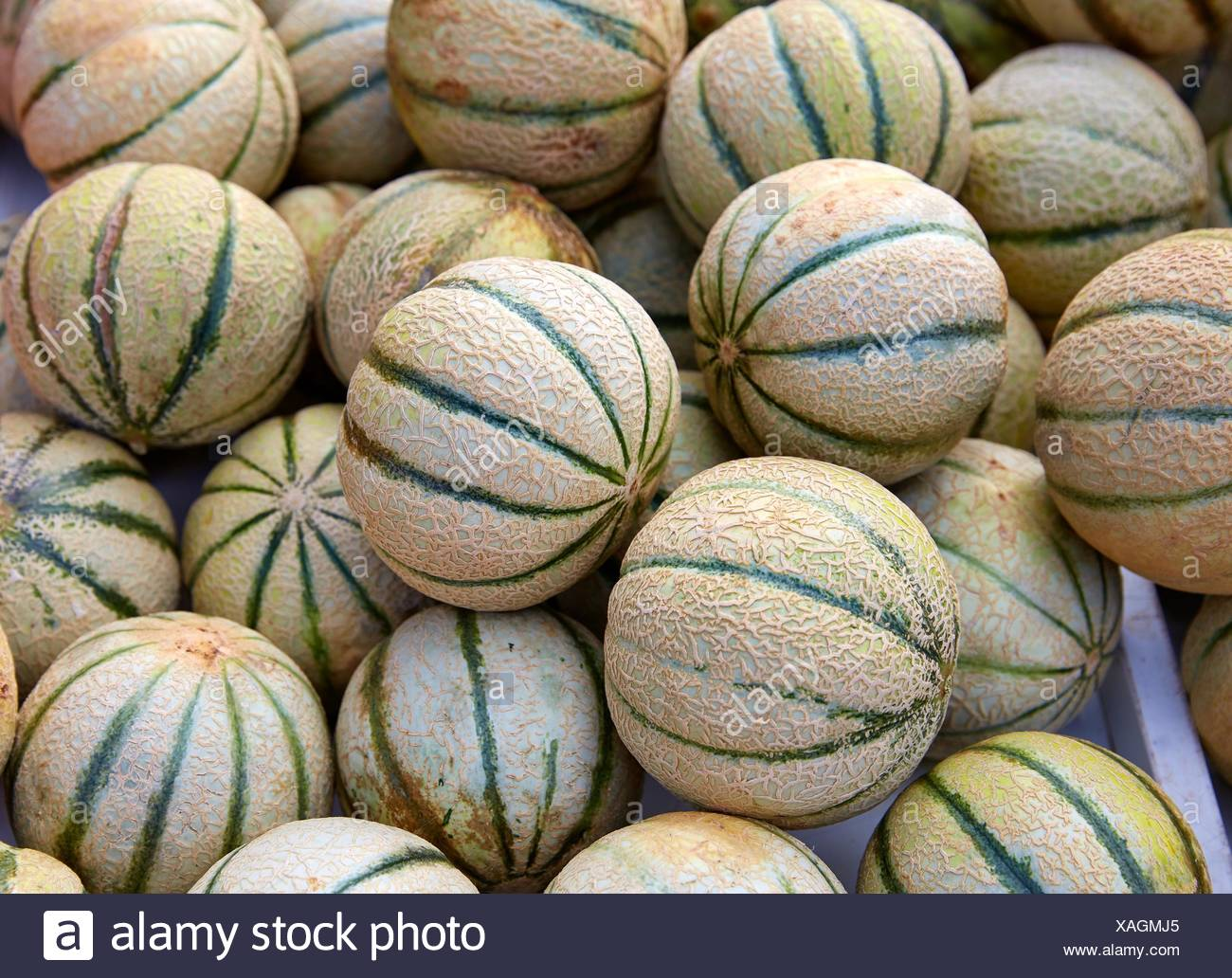 Cantaloupe melons at the marketplace stacked. - Stock Image