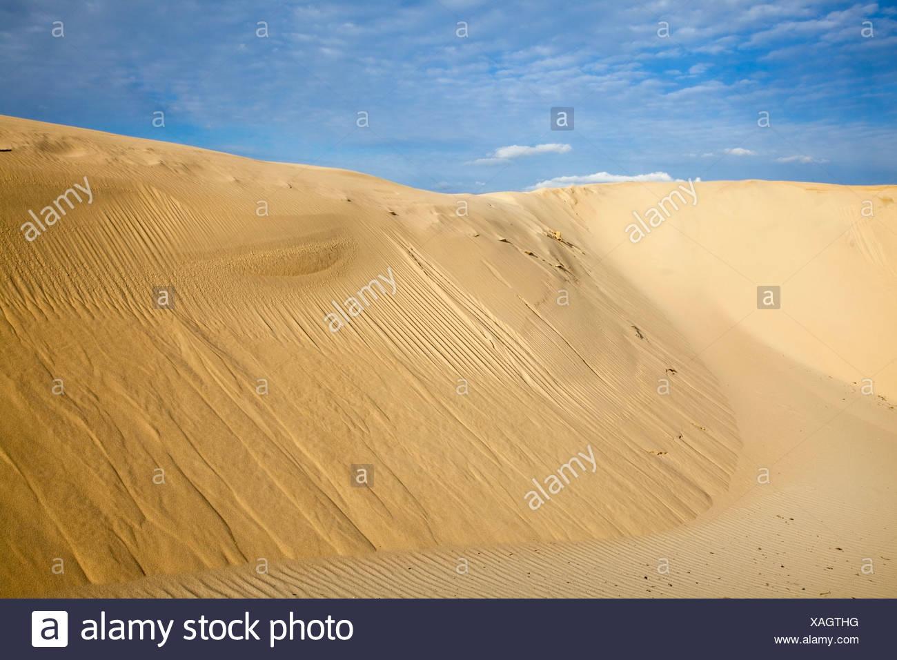 Bolonia, Andalusia, Spain; The Sand Dunes Near Tarifa - Stock Image