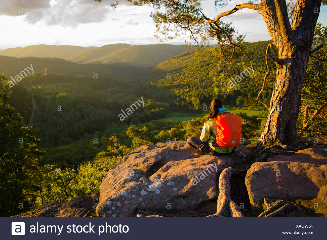 Viewpoint overlooking Fleckenstein Castle near Lembach Alsace France - Stock Image