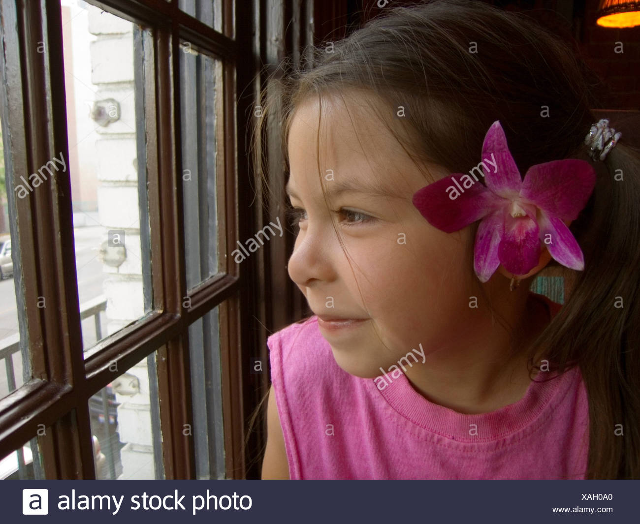 Flower behind ear stock photos flower behind ear stock images alamy close up of young girl with flower behind ear gazing out a window boise id izmirmasajfo