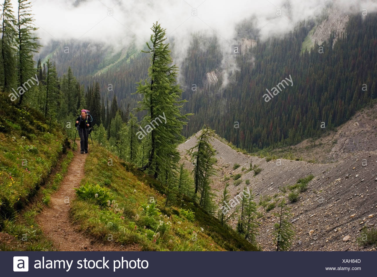 A female backpacker in her early thirties hiking the Rockwall Trail, Kootenay National Park. - Stock Image