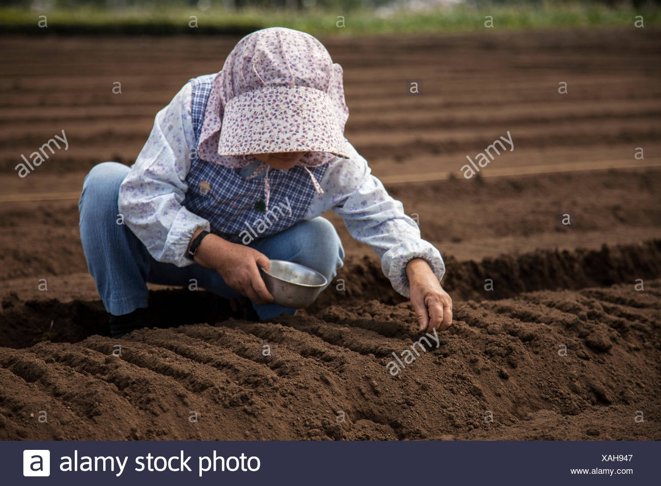 A Female Farmer Plants For The Upcoming Growing Season In Tokyo, Japan - Stock Image