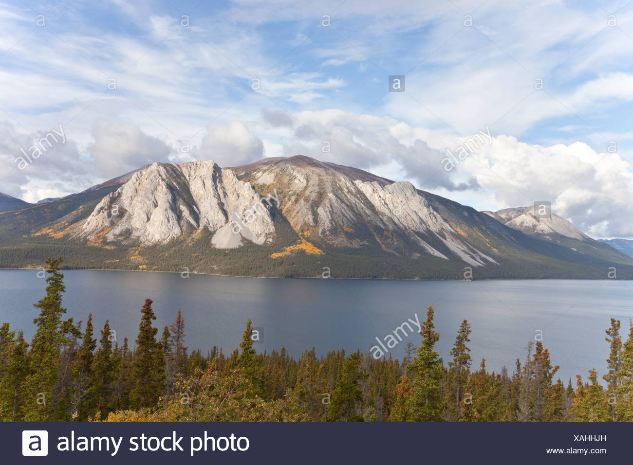 Mountain at Windy Arm of Tagish Lake, Indian summer, leaves in fall colours, autumn, South Klondike Highway, Yukon Territory - Stock Image