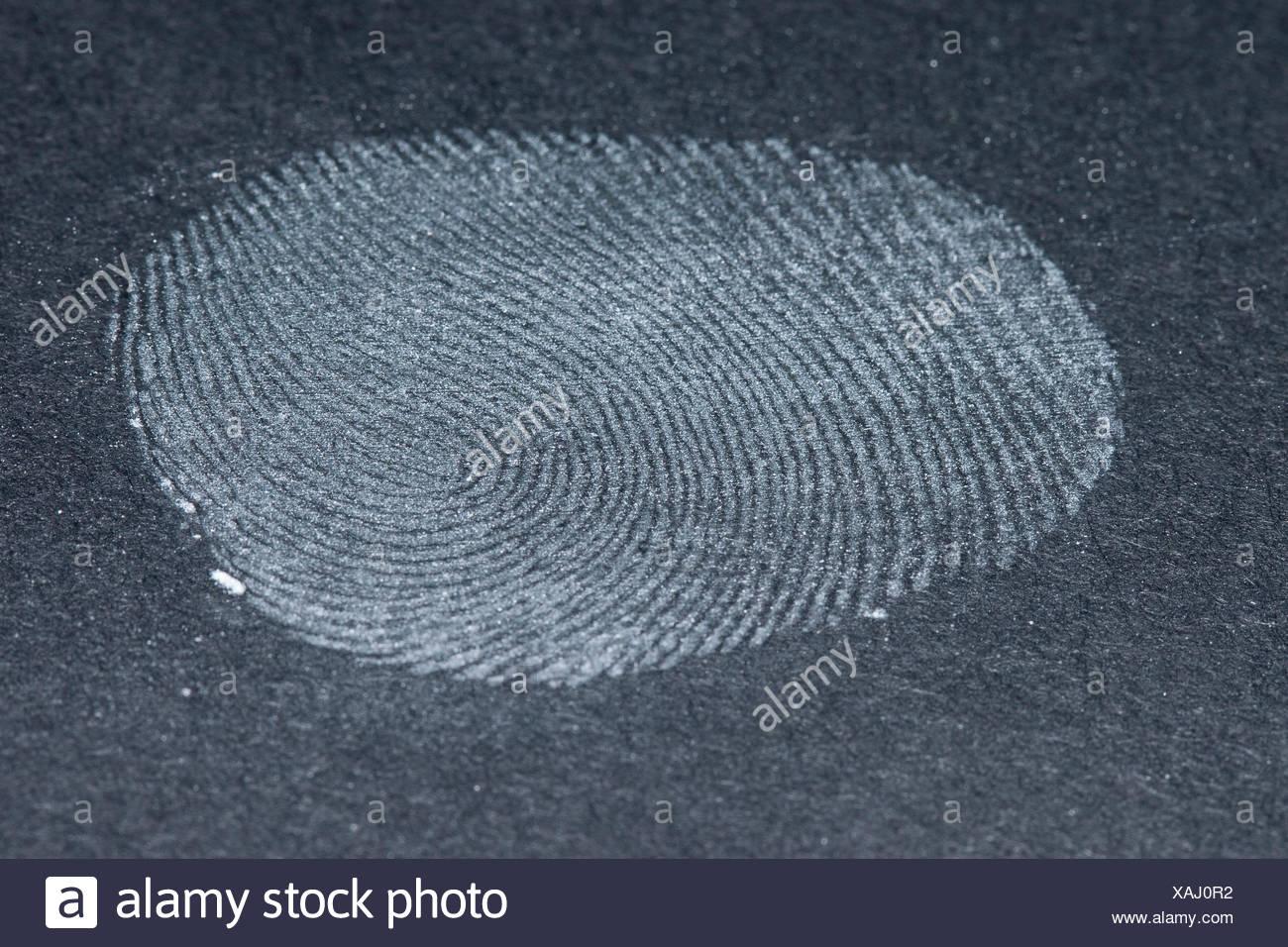 taking fingerprints. Step 5: fixed fingerprint - Stock Image