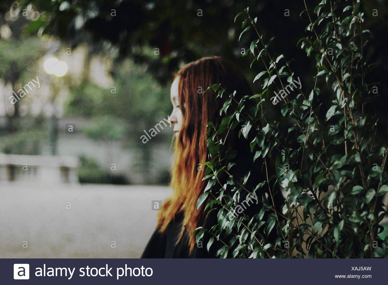 Side View Of A Thoughtful Teenage Girl Against Leaves - Stock Image