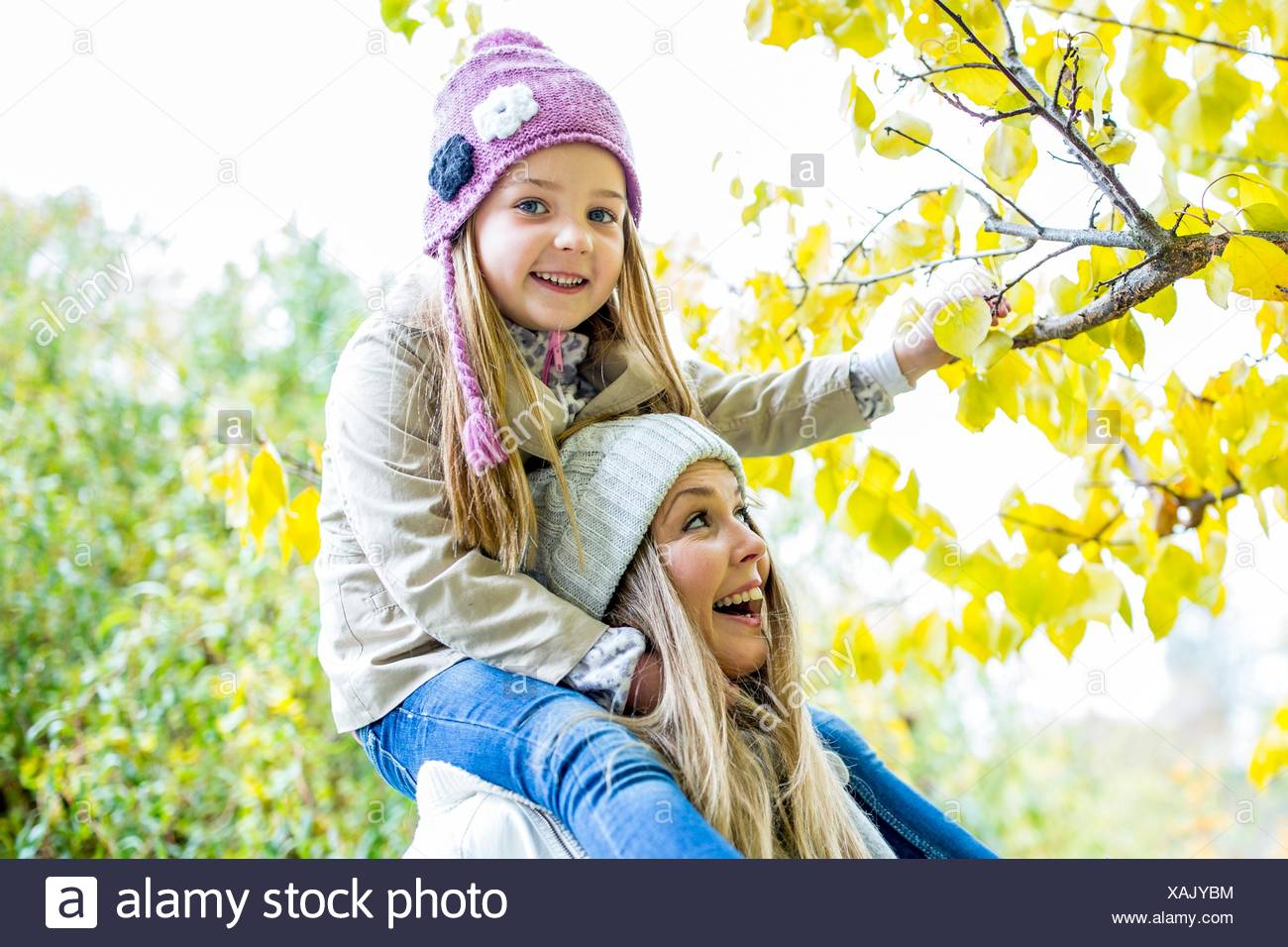 MODEL RELEASED. Mother carrying daughter on shoulders and looking at branch in autumn. - Stock Image