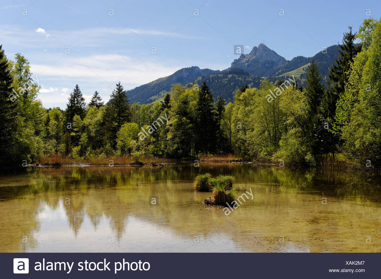 Lake Quellsee in spring, Wendelstein mountain at the back, landscape near Hammer in the Leitzachtal valley, near Bayrischzell - Stock Image