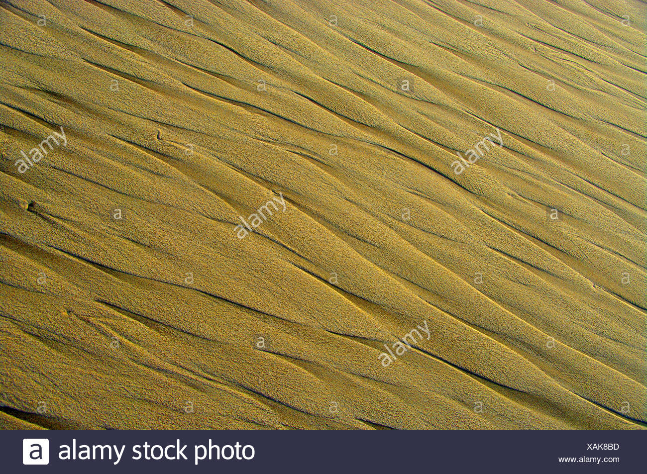 blazing sand - Stock Image