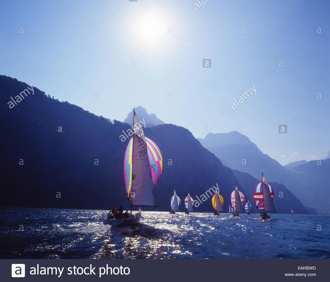 sailing regatta Urnersee yachting regatta Lake Lucerne water lake Central Switzerland Europe Central Switzerl - Stock Image