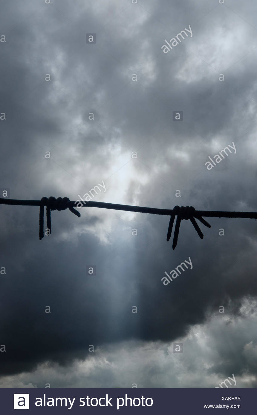 Silhouette of barbwire against a dramatic sky - Stock Image