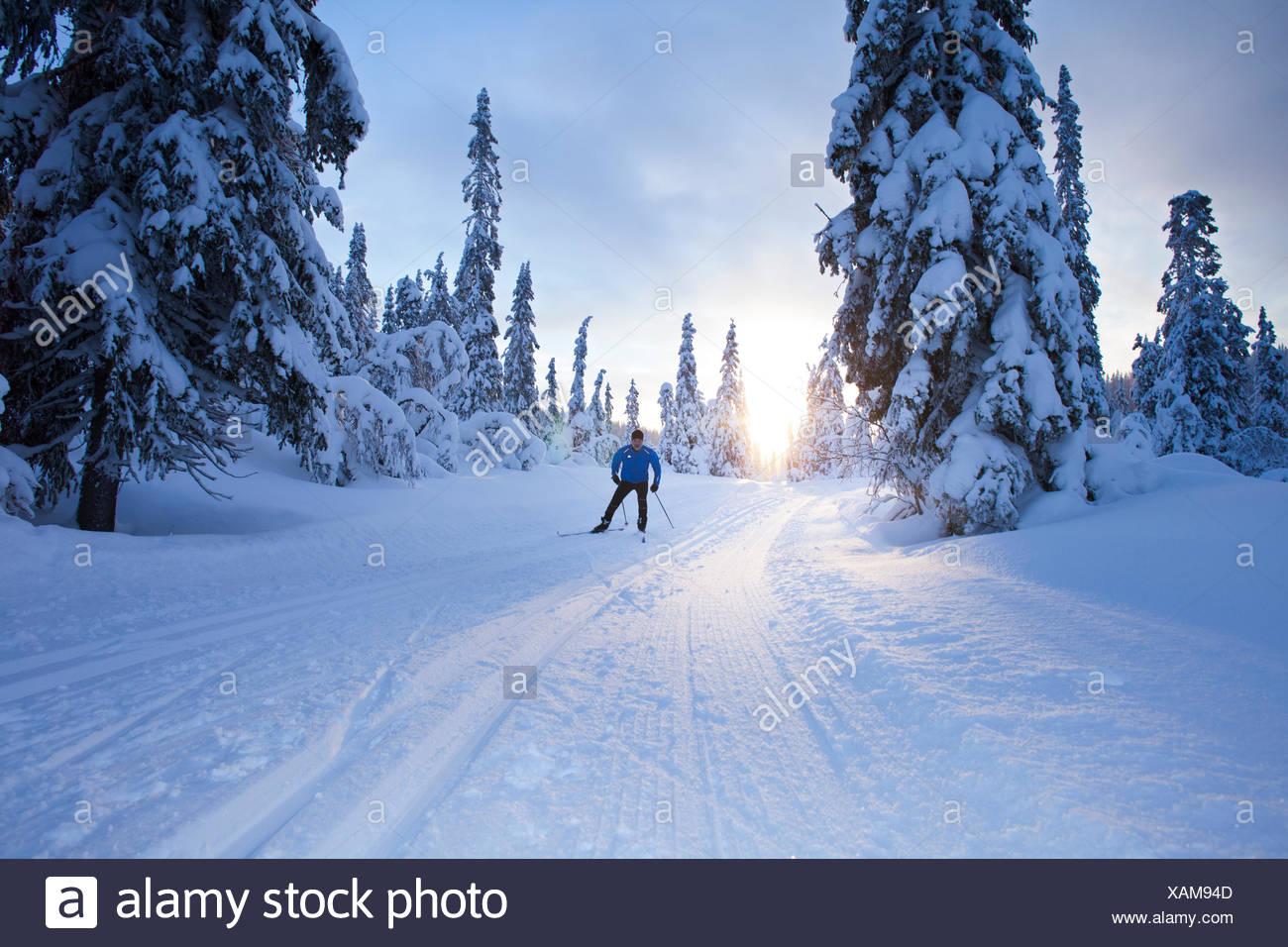 Sweden, Dalarna, Salen, Mature man cross-country skiing at dusk - Stock Image