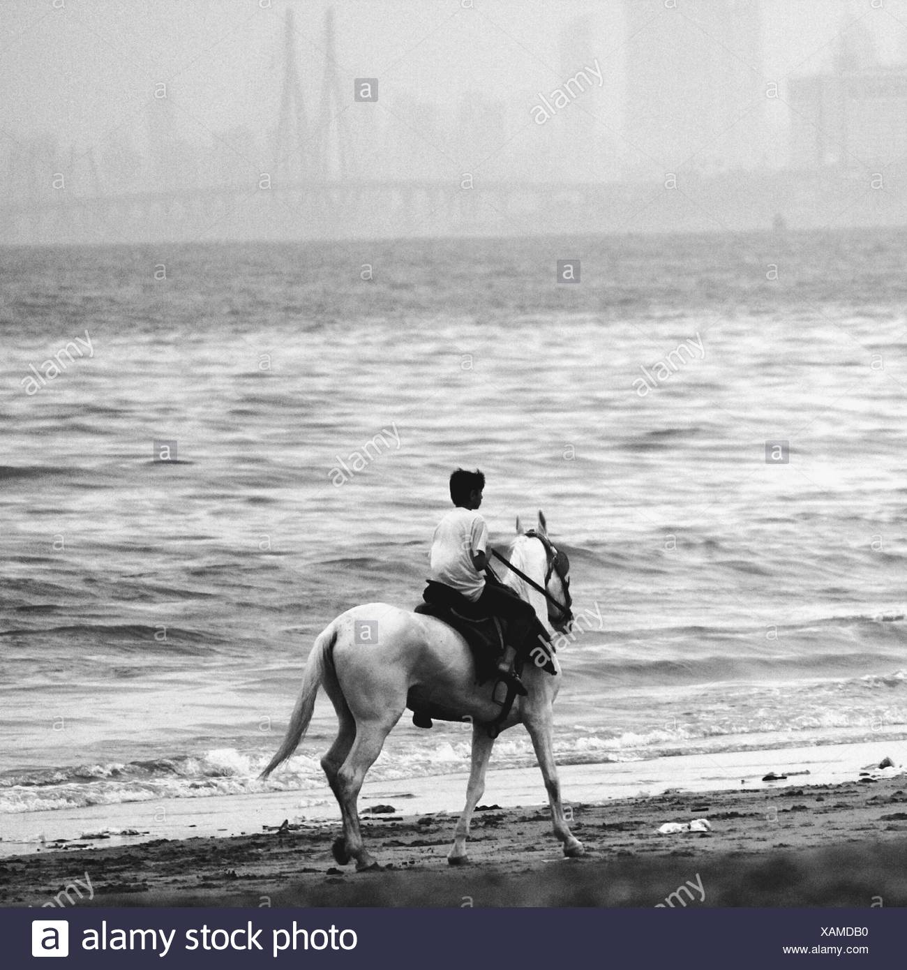 Person Riding Horse On Beach - Stock Image