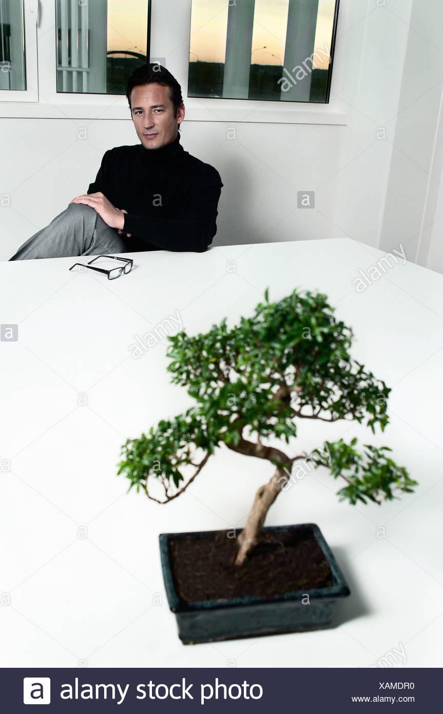 Creative at table musing over bonsai - Stock Image