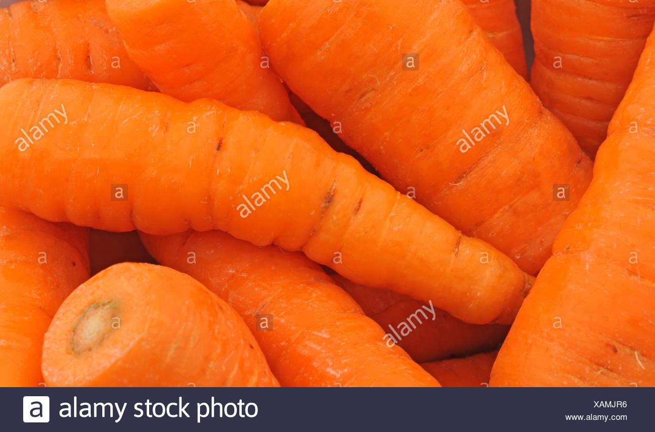Karotten / Carrots Stock Photo