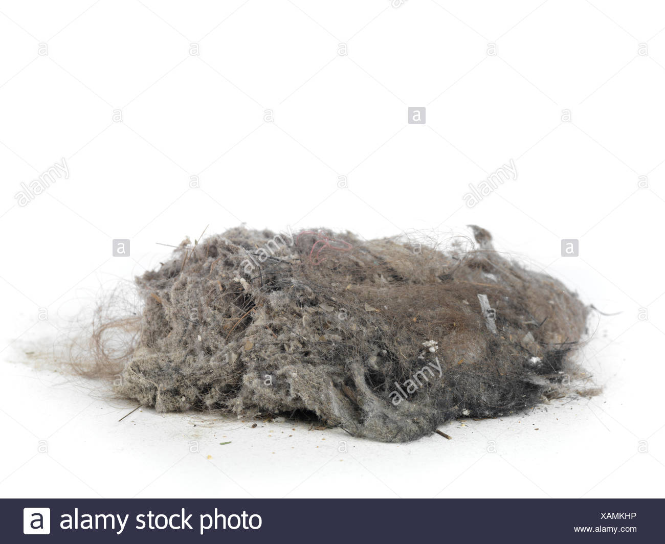 Pile of dust and hairs collected with a vacuum cleaner - Stock Image