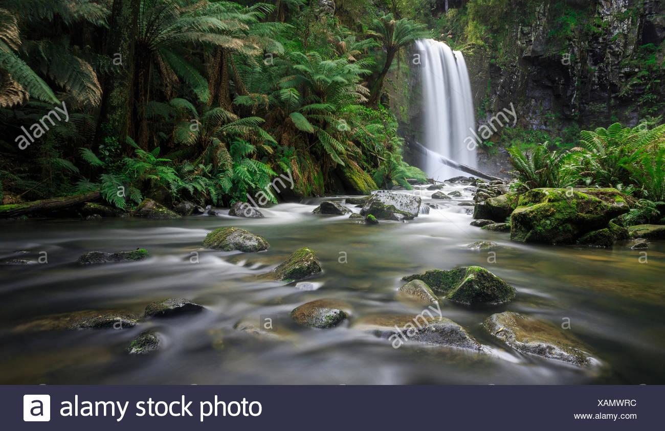 Hopetoun Falls, Great Otways National Park, Victoria, Australia - Stock Image