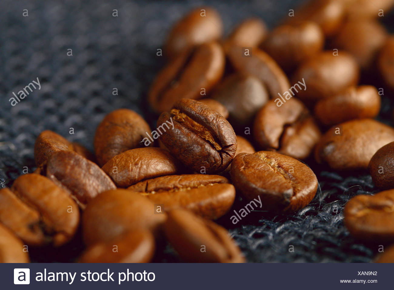 coffee bean - Stock Image