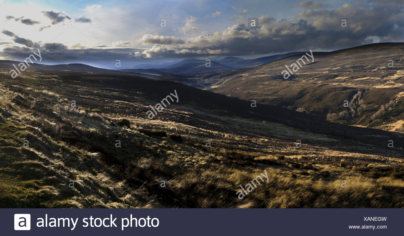 View of moorland habitat almost completely devoid of snow during unseasonably warm spring of 2011 Cairngorms N.P. Aberdeenshire - Stock Image