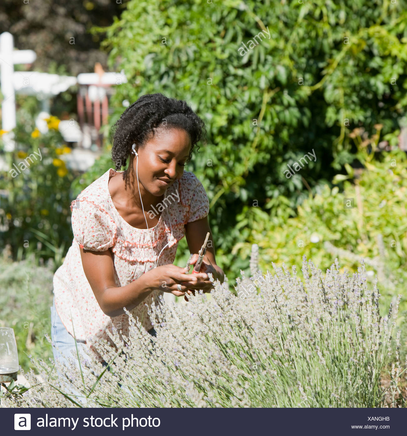 woman in the backyard listening to a digital music player - Stock Image