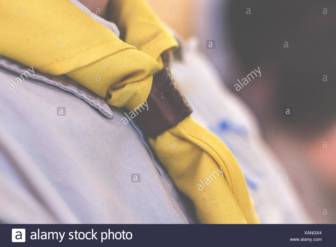 Midsection Of Boy Wearing Scout Scarf - Stock Image