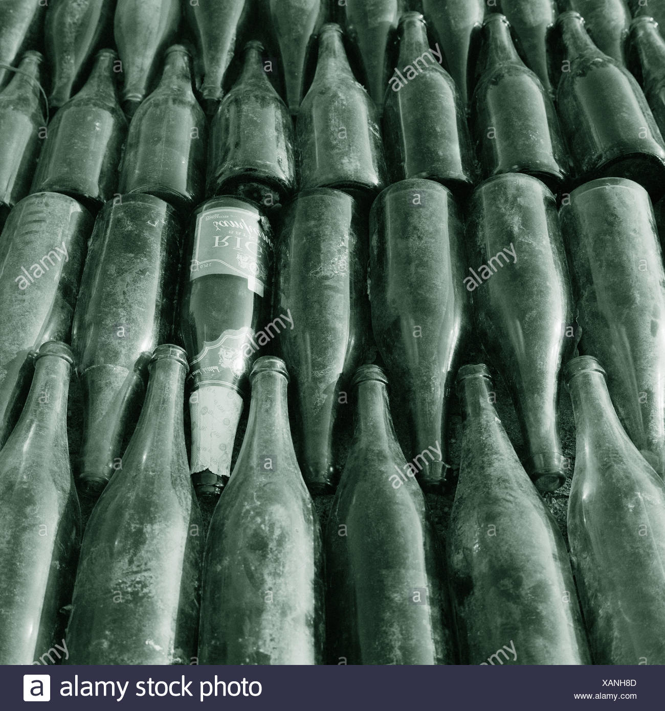 Old glass, Sparkling Wine Bottles, ordered, detail, environment protection, recycling, recycling, re-use, Bottles, glass Bottles, glass, green, dark green glass, garbage, waste, garbage separation, separation, raw material, order, juxtaposition, system, l - Stock Image