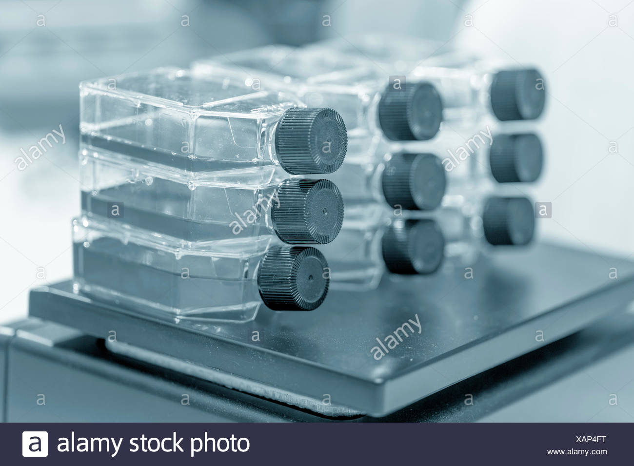 Microbiological flasks, close up. - Stock Image