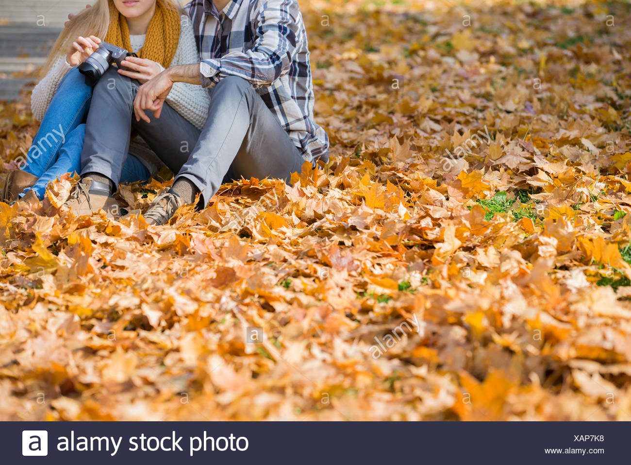 Low section of couple with camera sitting on autumn leaves in park - Stock Image