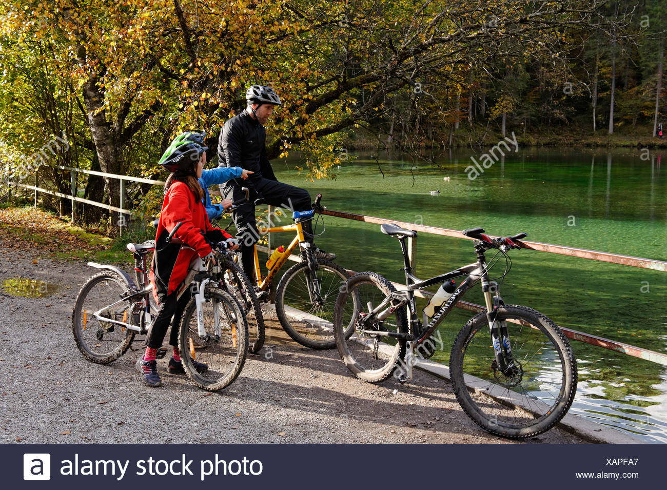 Father and children riding mountain bikes, at Badersee lake in Grainau, Werdenfelser Land, Upper Bavaria, Bavaria - Stock Image