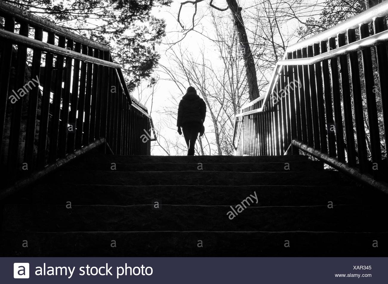 Silhouette Person Walking On Staircase In Park - Stock Image