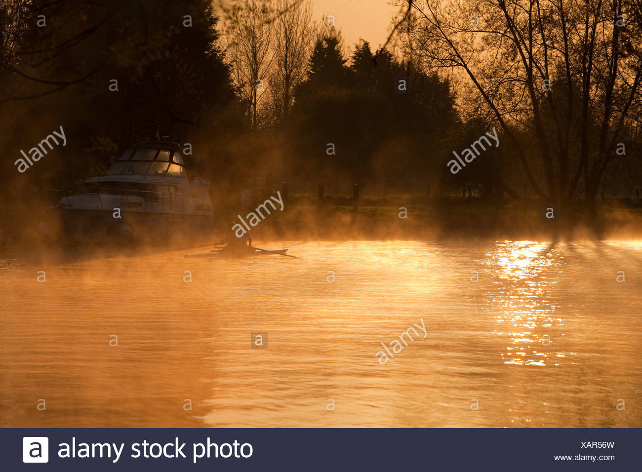 Rowers on the River Thames in the dawn mist at Sonning, Berkshire, Uk - Stock Image