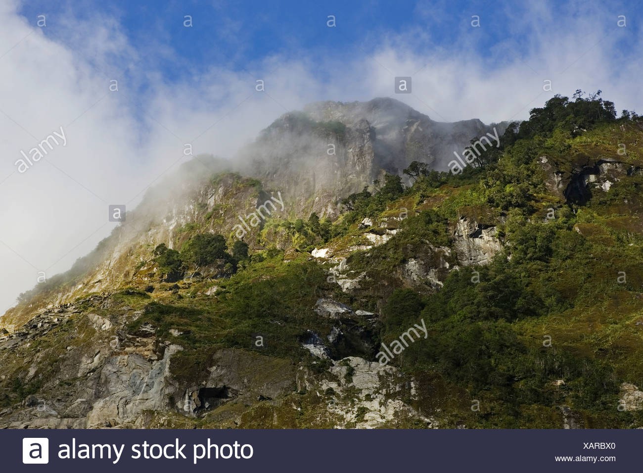 Mountain landscape, Park Queulat, Patagonia, Chile, South America - Stock Image