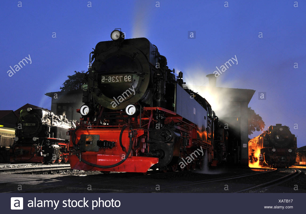 Steam locomotives in the evening - Stock Image
