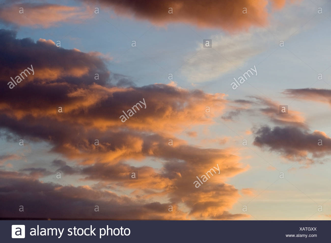 Cloudy sky at sunset, cumulus clouds, Estonia, Baltic States, Northeastern Europe - Stock Image