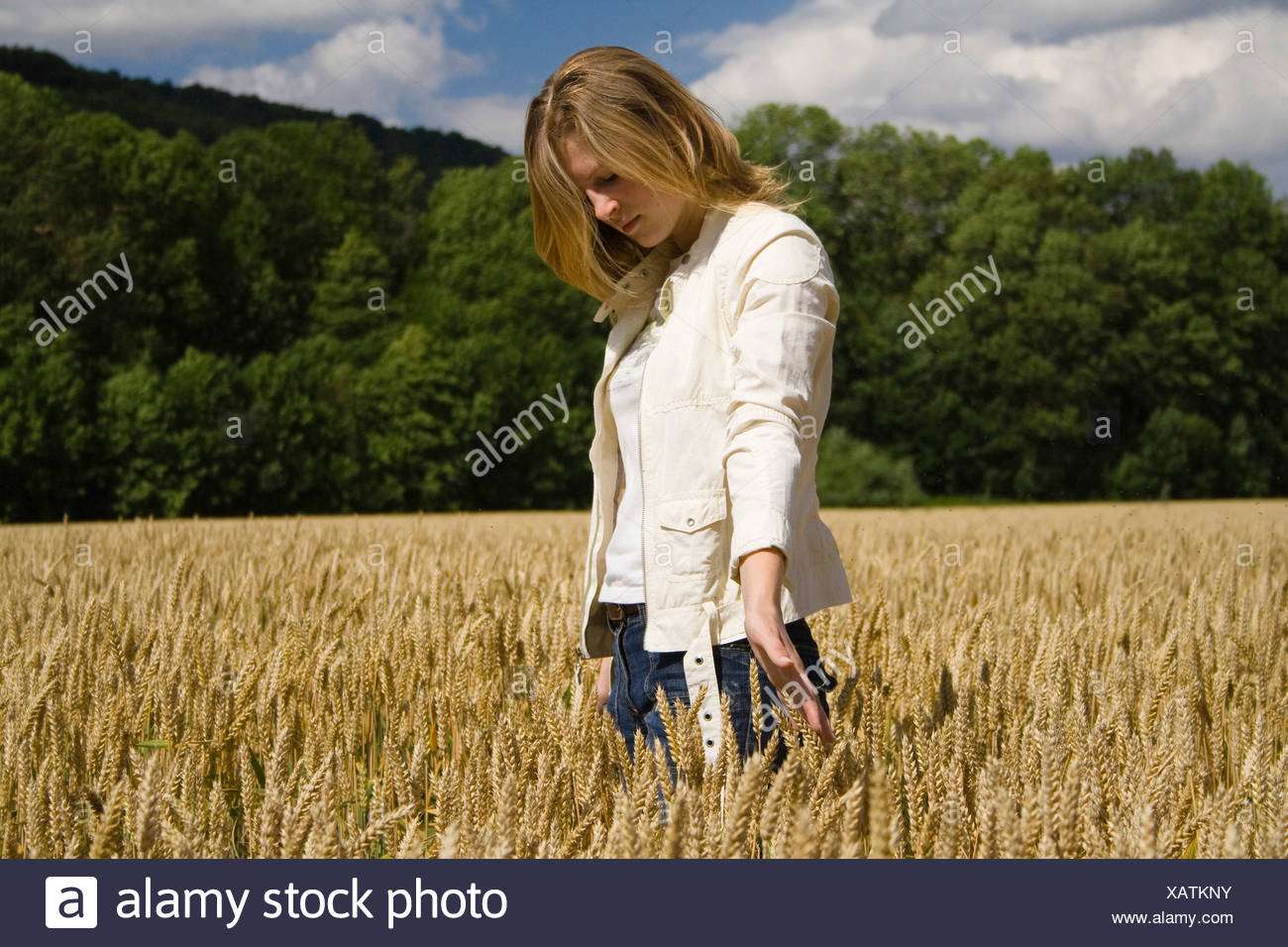 young woman grain field landscape humans nature Portrait summer thoughtful dream dreamed womanlike walk w - Stock Image