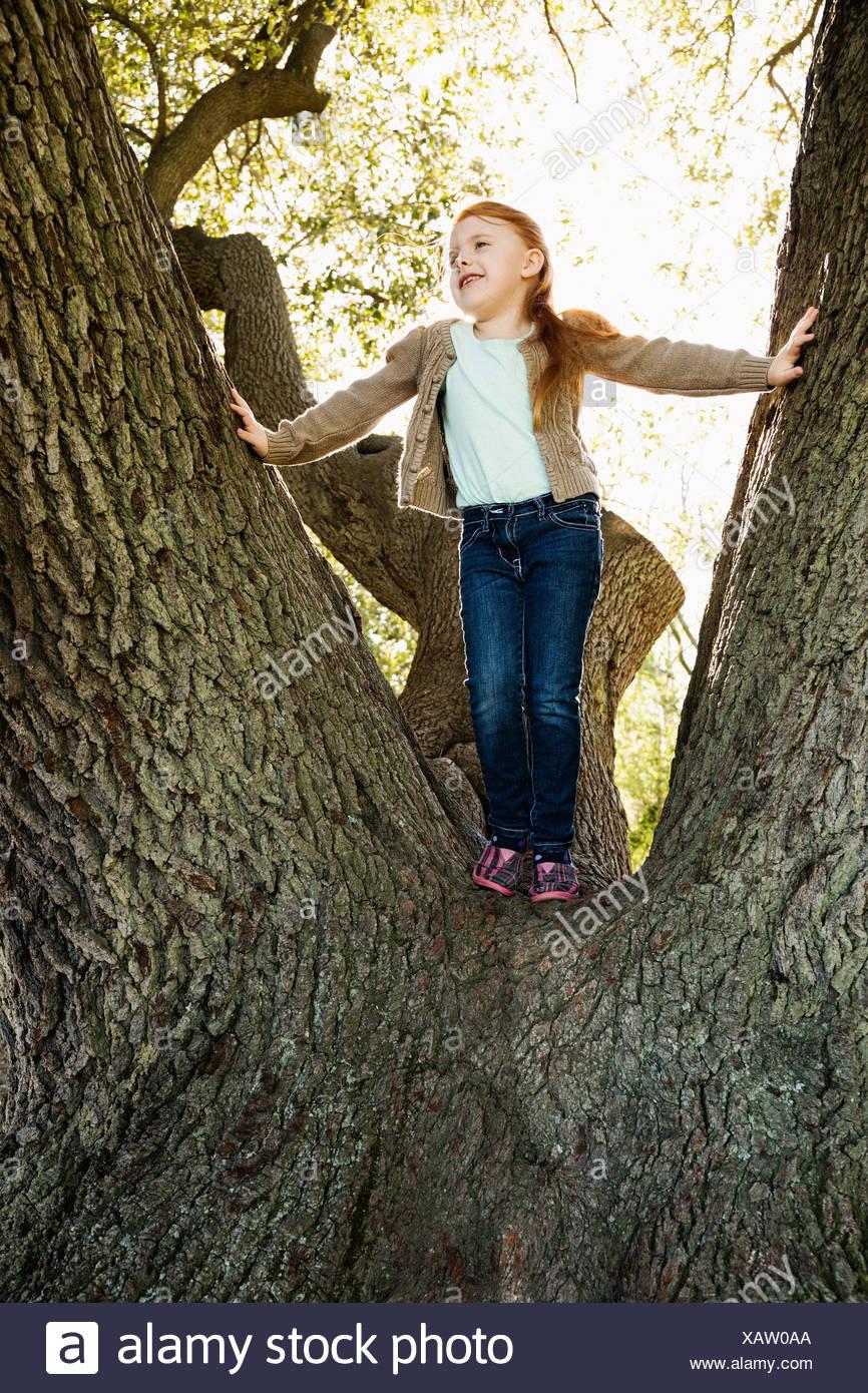 Portrait of girl gazing from tree Stock Photo