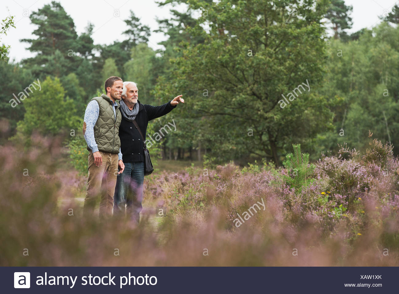 Father and adult son birdwatching - Stock Image