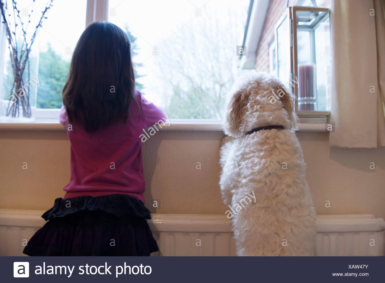 Girl and her pet dog standing and looking out of window - Stock Image