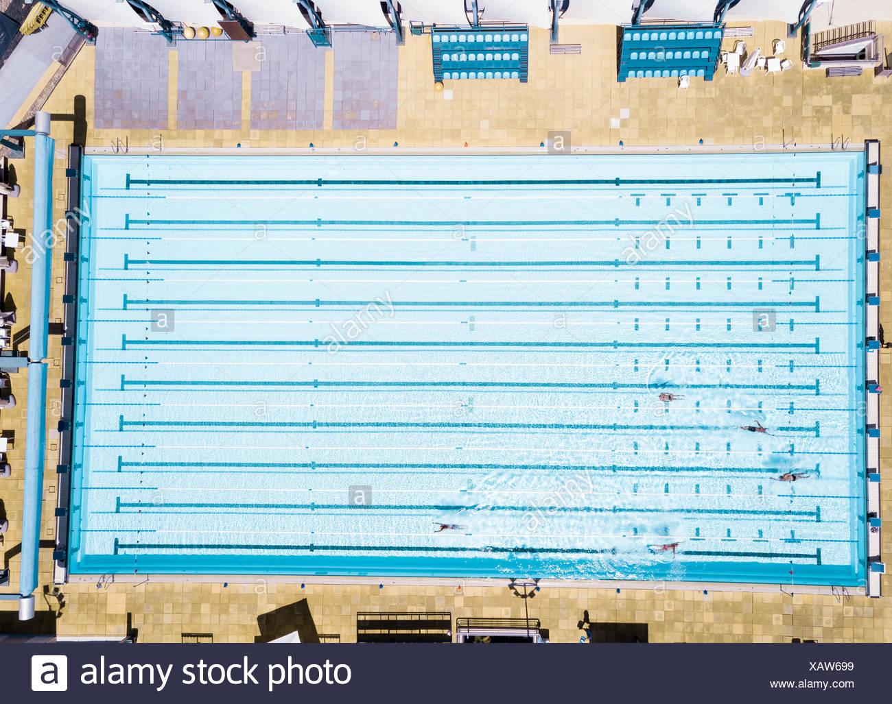 Aerial View Of Swimmers In Olympic Swimming Pool Tenerife Top Training Santa Cruz De Spain