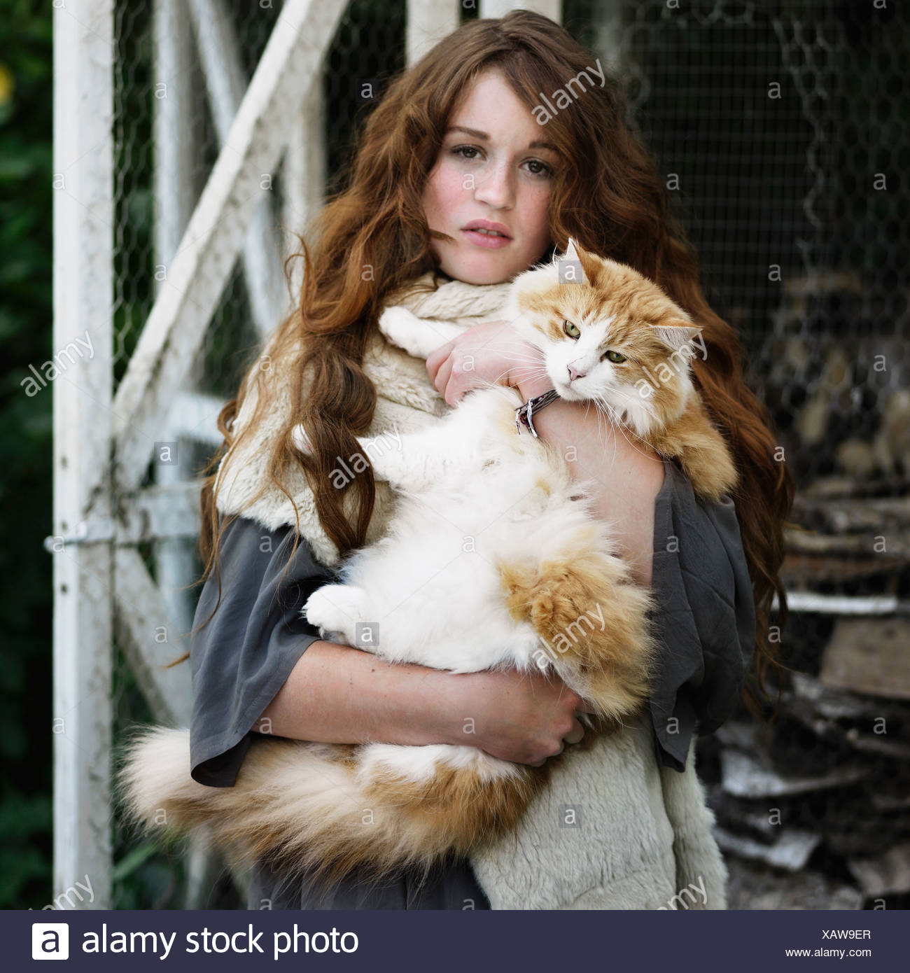 Woman holding large cat outdoors - Stock Image