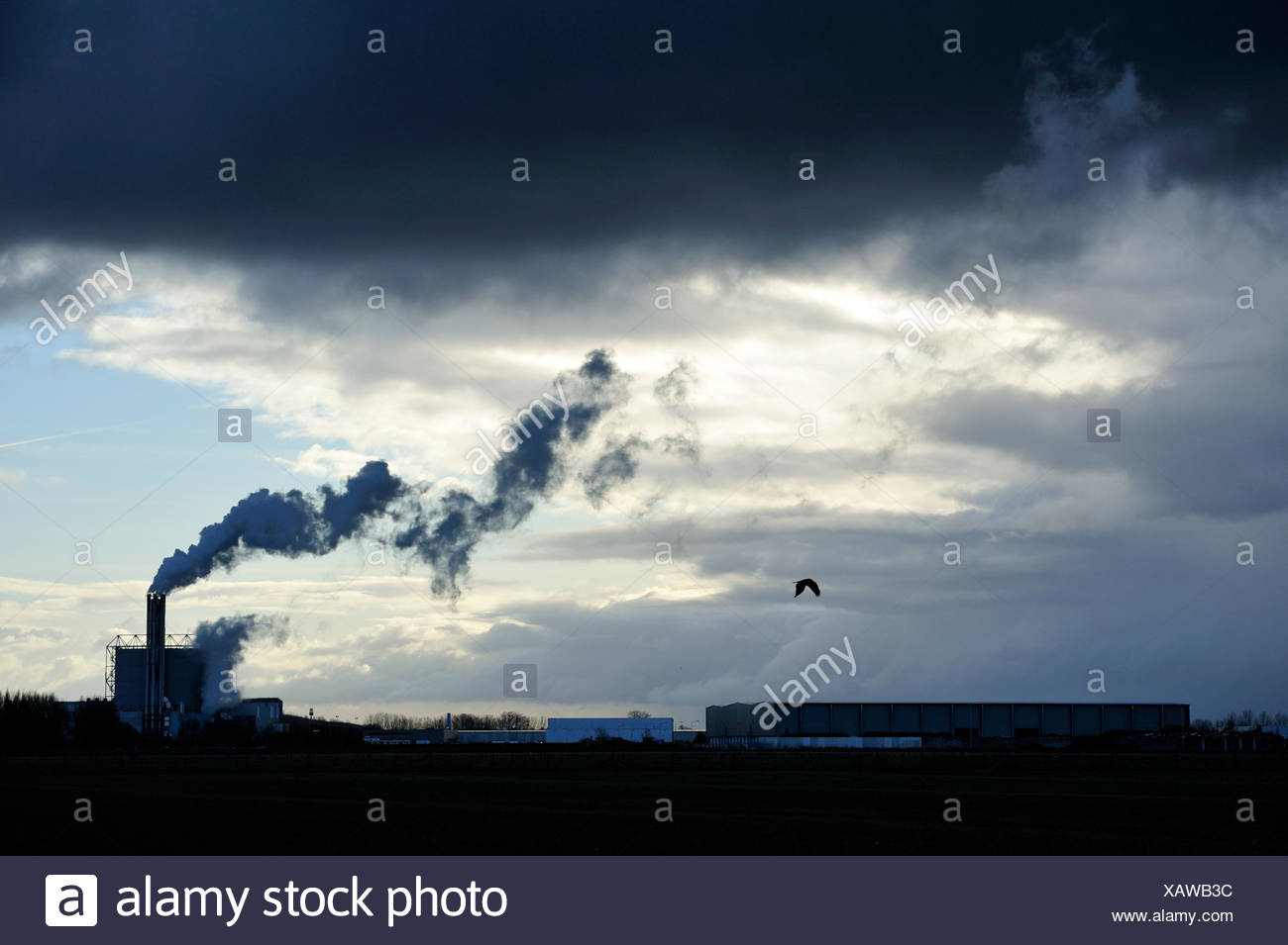 Smoking chimney against the light with a raincloud - Stock Image